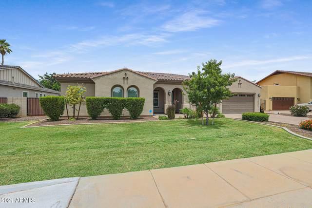 550 W Las Palmaritas Drive, Phoenix, AZ 85021 (MLS #6247172) :: Yost Realty Group at RE/MAX Casa Grande