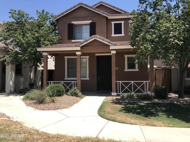 3948 S Napa Lane, Gilbert, AZ 85297 (MLS #6247190) :: Yost Realty Group at RE/MAX Casa Grande