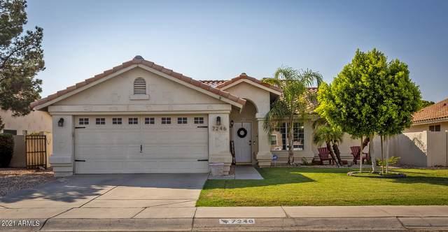 7246 W Tina Lane, Glendale, AZ 85310 (MLS #6247207) :: Maison DeBlanc Real Estate