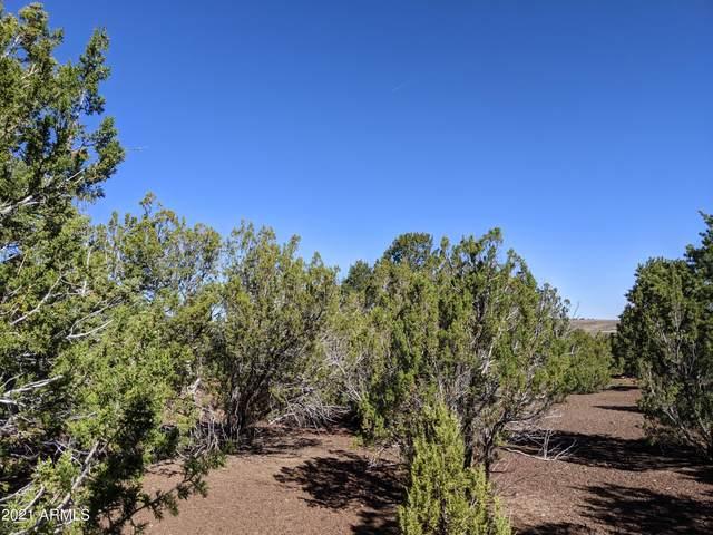 lot 58 N Stanford Drive, Vernon, AZ 85940 (MLS #6247235) :: The Daniel Montez Real Estate Group
