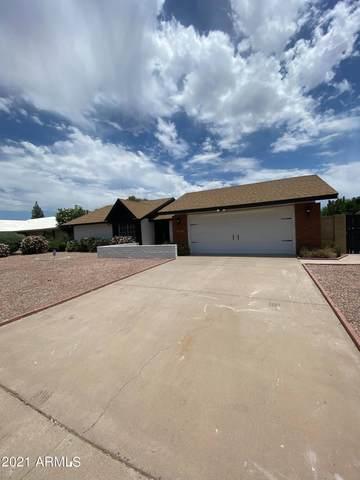 15209 N 23RD Lane, Phoenix, AZ 85023 (MLS #6247244) :: Yost Realty Group at RE/MAX Casa Grande