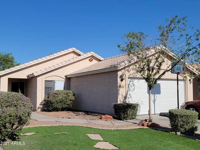 7342 N 70TH Drive, Glendale, AZ 85303 (MLS #6247254) :: Yost Realty Group at RE/MAX Casa Grande