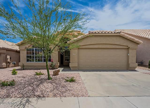 3305 E Mountain Vista Drive, Phoenix, AZ 85048 (MLS #6247267) :: Conway Real Estate