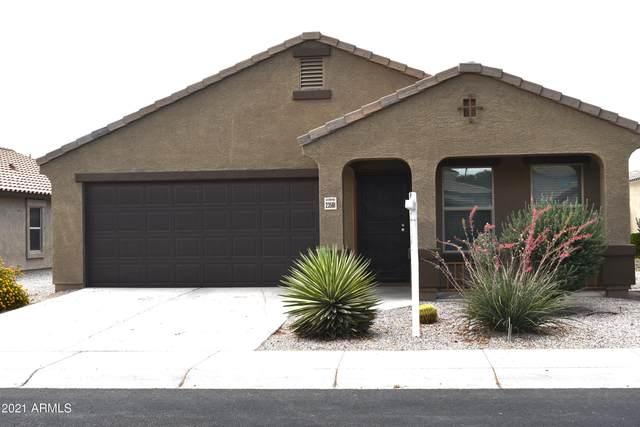 23561 W Chipman Road, Buckeye, AZ 85326 (MLS #6247308) :: CANAM Realty Group