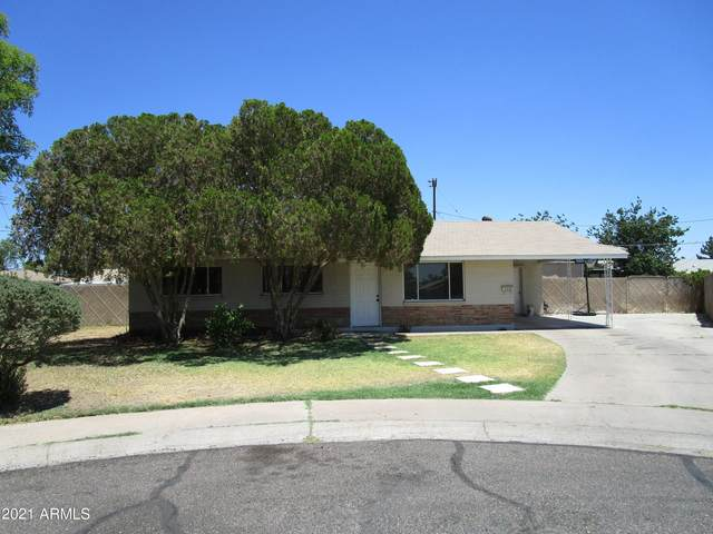 3036 W Aster Drive, Phoenix, AZ 85029 (MLS #6247315) :: Yost Realty Group at RE/MAX Casa Grande