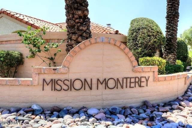 9993 E Fanfol Drive, Scottsdale, AZ 85258 (MLS #6247320) :: The Copa Team   The Maricopa Real Estate Company