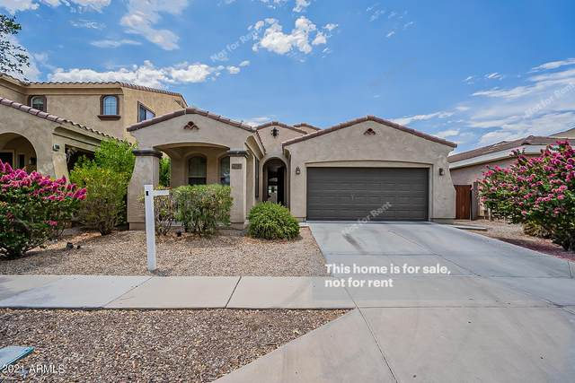3545 E Constitution Drive, Gilbert, AZ 85296 (MLS #6247348) :: Yost Realty Group at RE/MAX Casa Grande