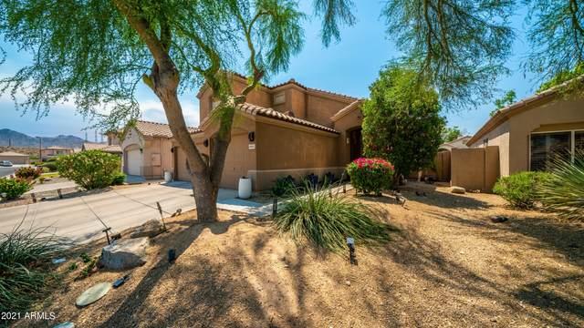 10153 E Floriade Drive, Scottsdale, AZ 85260 (MLS #6247374) :: Yost Realty Group at RE/MAX Casa Grande