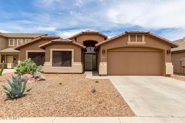 29580 N Candlewood Drive, San Tan Valley, AZ 85143 (MLS #6247383) :: Klaus Team Real Estate Solutions