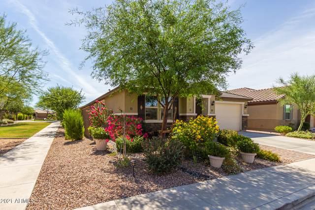 1365 N Claiborne, Mesa, AZ 85205 (MLS #6247446) :: Yost Realty Group at RE/MAX Casa Grande