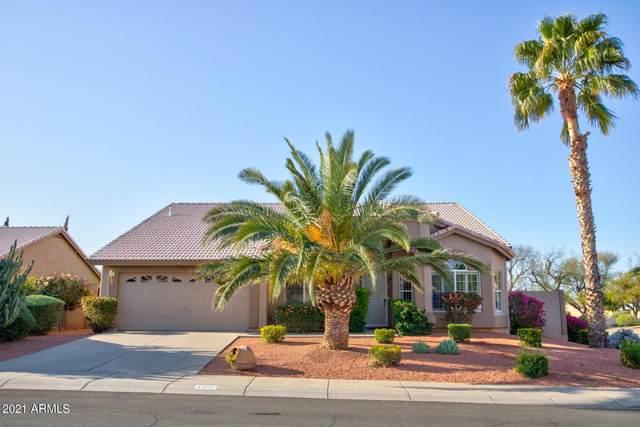 4305 E Muriel Drive, Phoenix, AZ 85032 (MLS #6247460) :: Midland Real Estate Alliance