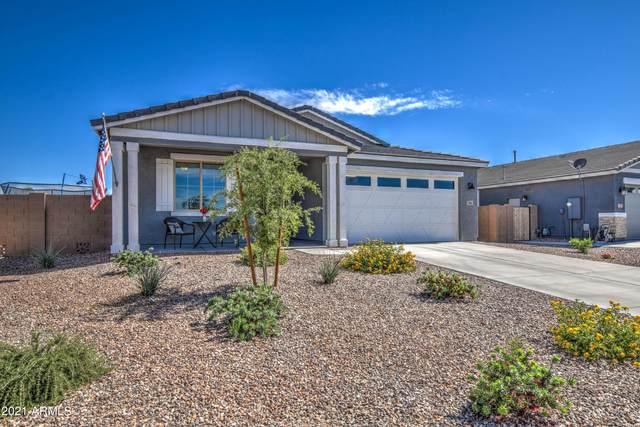 565 W Wind Cave Drive, San Tan Valley, AZ 85140 (MLS #6247464) :: Yost Realty Group at RE/MAX Casa Grande