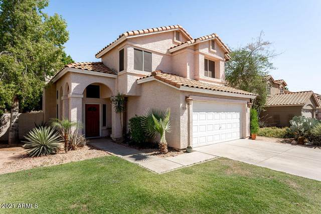 3105 E Cottonwood Lane, Phoenix, AZ 85048 (MLS #6247545) :: Yost Realty Group at RE/MAX Casa Grande