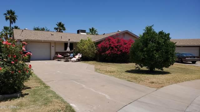 106 E Elm Court, Gilbert, AZ 85234 (MLS #6247553) :: Conway Real Estate