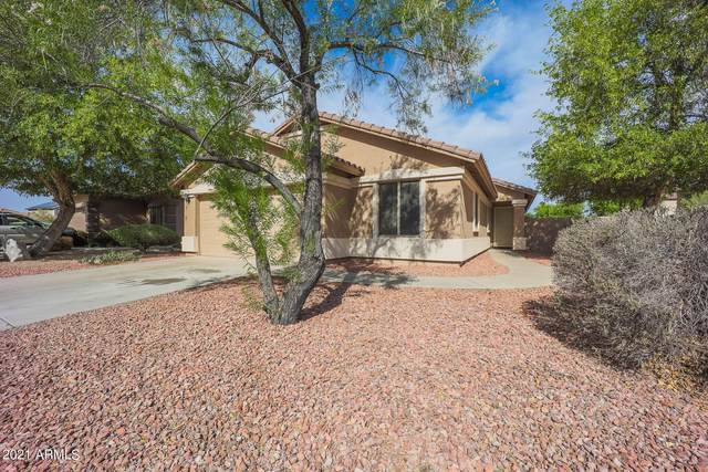 13002 W Larkspur Road, El Mirage, AZ 85335 (MLS #6247572) :: Devor Real Estate Associates
