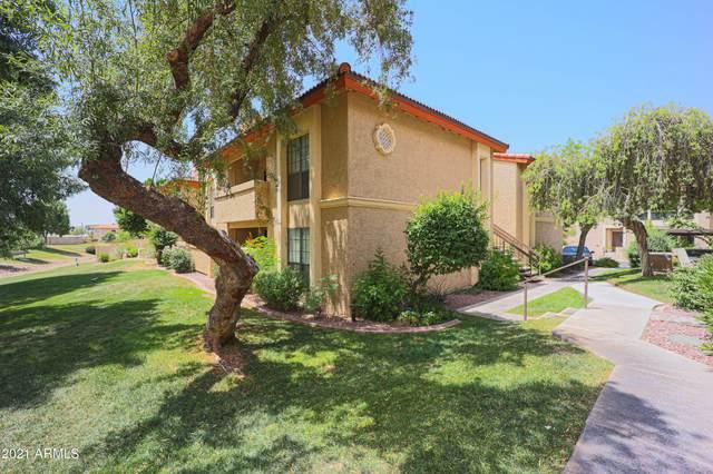 10410 N Cave Creek Road #1211, Phoenix, AZ 85020 (MLS #6247578) :: The Daniel Montez Real Estate Group