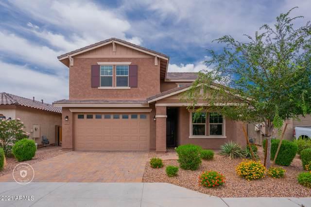 12113 W Desert Moon Way, Peoria, AZ 85383 (MLS #6247605) :: Klaus Team Real Estate Solutions
