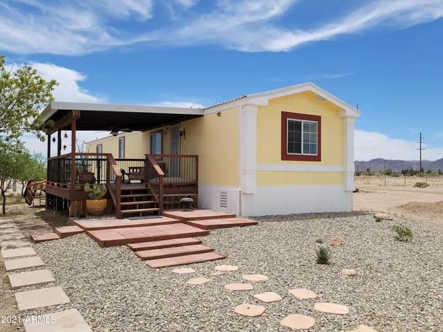3178 W Saguaro Road, Willcox, AZ 85643 (MLS #6247628) :: Executive Realty Advisors