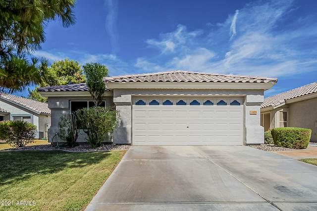 1171 N Amber Street, Chandler, AZ 85225 (MLS #6247641) :: Yost Realty Group at RE/MAX Casa Grande