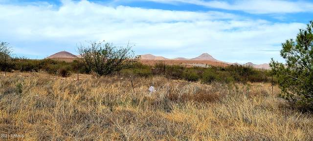 Lot 4 W Helen Street, Bisbee, AZ 85603 (MLS #6247663) :: Elite Home Advisors