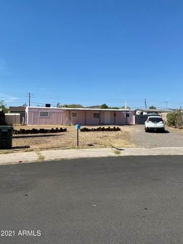 1950 E Villa Rita Dr Drive, Phoenix, AZ 85022 (MLS #6247748) :: CANAM Realty Group