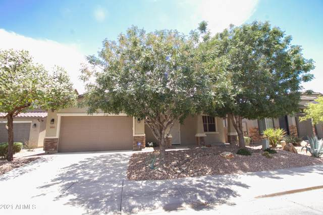 42563 W Avella Drive, Maricopa, AZ 85138 (MLS #6247768) :: Executive Realty Advisors