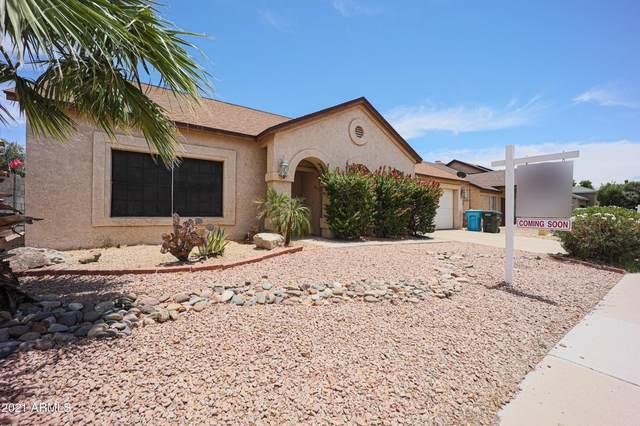 23643 N 41ST Avenue, Glendale, AZ 85310 (MLS #6247772) :: Yost Realty Group at RE/MAX Casa Grande