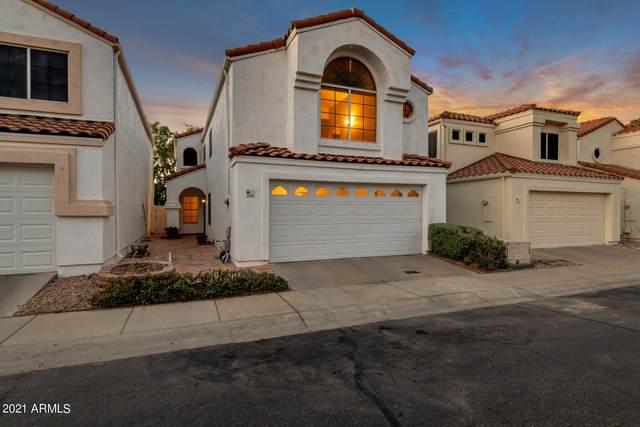 2344 E Gelding Drive, Phoenix, AZ 85022 (MLS #6247776) :: Dave Fernandez Team | HomeSmart