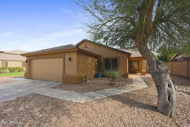 8151 W Hess Avenue, Phoenix, AZ 85043 (MLS #6247782) :: Executive Realty Advisors