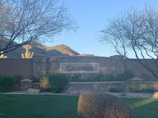 3044 W Glenhaven Drive, Phoenix, AZ 85045 (MLS #6247790) :: Dave Fernandez Team | HomeSmart