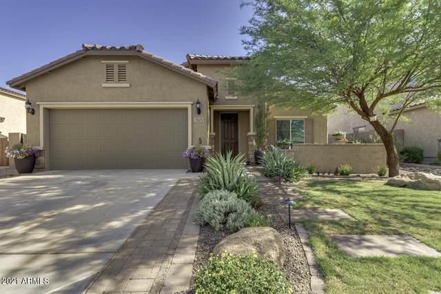 17479 W Hedgehog Place, Surprise, AZ 85387 (MLS #6247878) :: Power Realty Group Model Home Center