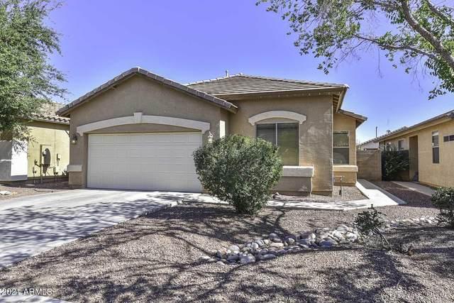 12530 W Bird Lane, Litchfield Park, AZ 85340 (MLS #6247905) :: Yost Realty Group at RE/MAX Casa Grande