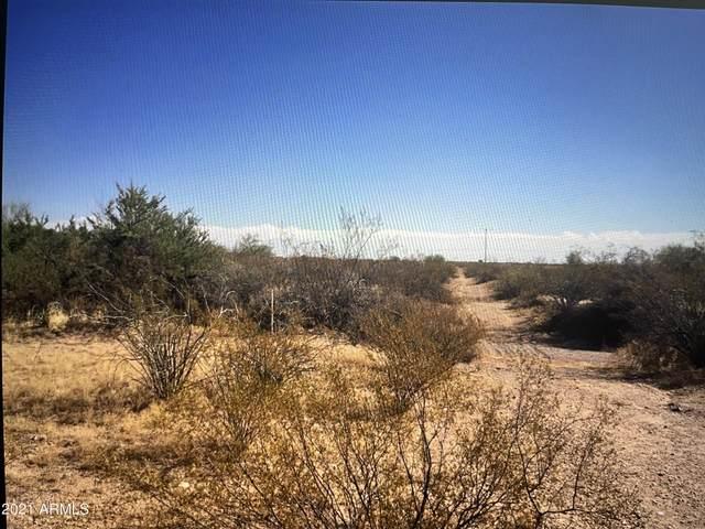 000000 W Red Bird Road, Wittmann, AZ 85361 (MLS #6247912) :: Power Realty Group Model Home Center