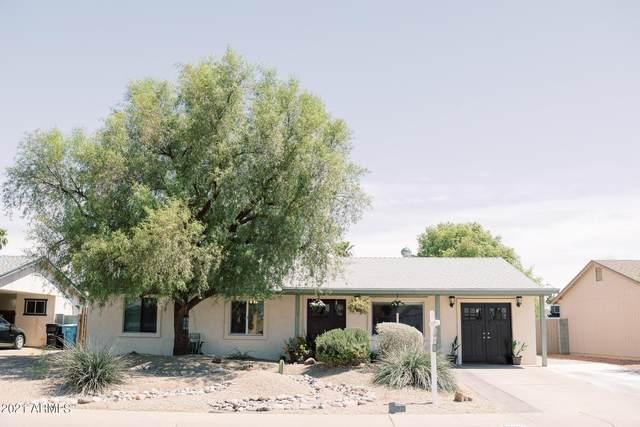 3807 E Joan De Arc Avenue, Phoenix, AZ 85032 (MLS #6247957) :: Yost Realty Group at RE/MAX Casa Grande