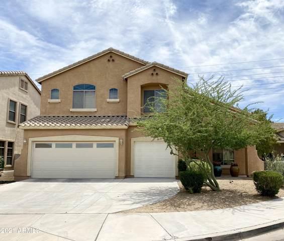 7513 S 15th Drive, Phoenix, AZ 85041 (MLS #6247994) :: Yost Realty Group at RE/MAX Casa Grande