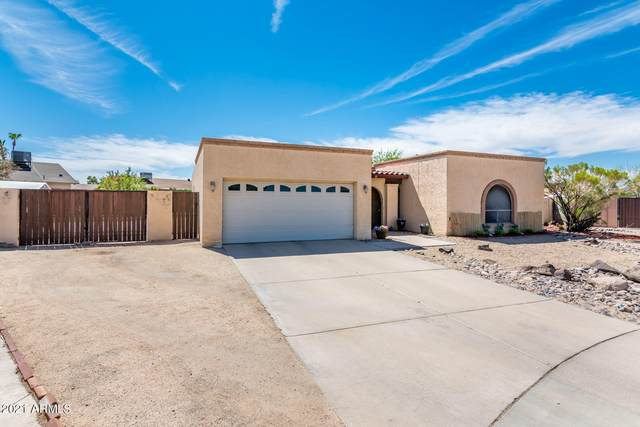 3631 W Saint John Road, Glendale, AZ 85308 (MLS #6248005) :: Yost Realty Group at RE/MAX Casa Grande