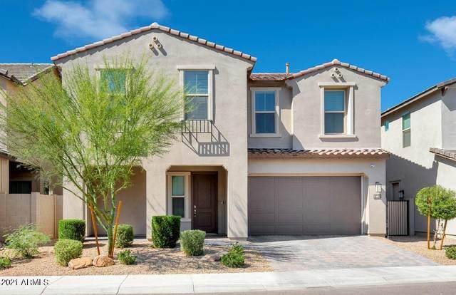 6642 E Rose Marie Lane, Phoenix, AZ 85054 (MLS #6248009) :: ASAP Realty