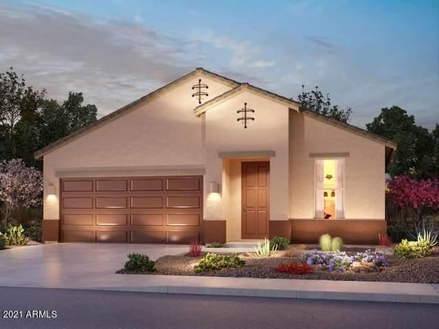 42300 W Morning Glory Way, Maricopa, AZ 85138 (MLS #6248012) :: Elite Home Advisors