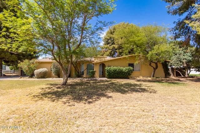 10316 W Catalina Drive, Avondale, AZ 85392 (MLS #6248030) :: Yost Realty Group at RE/MAX Casa Grande