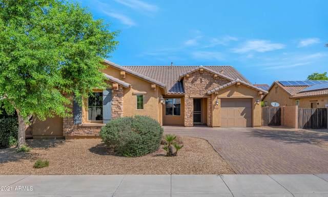 15636 W Roma Avenue, Goodyear, AZ 85395 (MLS #6248113) :: Yost Realty Group at RE/MAX Casa Grande