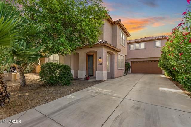 1365 E Colorado Loop, Casa Grande, AZ 85122 (MLS #6248151) :: The AZ Performance PLUS+ Team