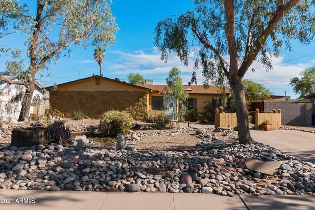 1913 E El Parque Drive, Tempe, AZ 85282 (MLS #6248165) :: Yost Realty Group at RE/MAX Casa Grande