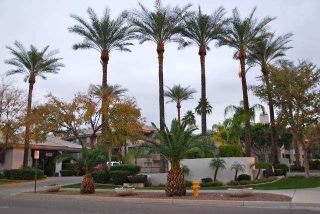 4343 N 21ST Street #245, Phoenix, AZ 85016 (MLS #6248176) :: Yost Realty Group at RE/MAX Casa Grande