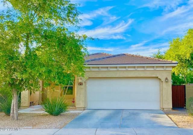 960 E Jacob Street, Chandler, AZ 85225 (MLS #6248207) :: Arizona Home Group