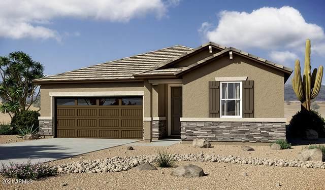 24450 N Seed Road, Florence, AZ 85132 (MLS #6248219) :: Yost Realty Group at RE/MAX Casa Grande