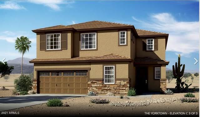 9910 E Harvest Road, Florence, AZ 85132 (MLS #6248243) :: Elite Home Advisors