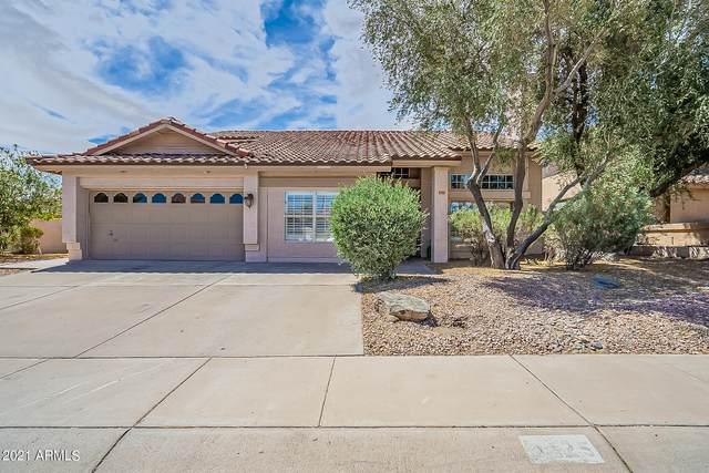 3225 E Rock Wren Road, Phoenix, AZ 85044 (MLS #6248263) :: Yost Realty Group at RE/MAX Casa Grande