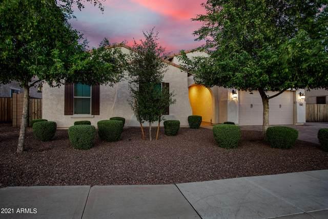 4237 N 180TH Lane, Goodyear, AZ 85395 (MLS #6248265) :: Yost Realty Group at RE/MAX Casa Grande