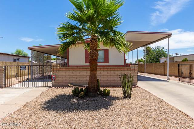 16633 N Queen Esther Drive, Surprise, AZ 85378 (MLS #6248283) :: RE/MAX Desert Showcase