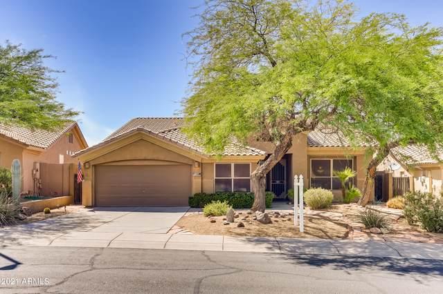 11384 S Morningside Drive, Goodyear, AZ 85338 (MLS #6248310) :: Lucido Agency